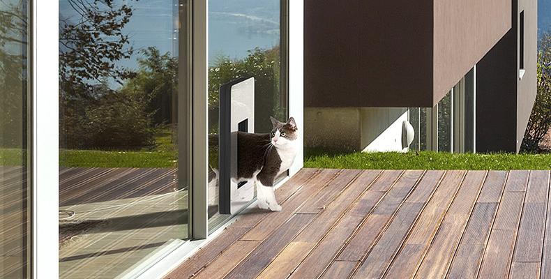 automatischen katzen und hundet ren insektenschutz f r fenster und t ren pollenschutz. Black Bedroom Furniture Sets. Home Design Ideas