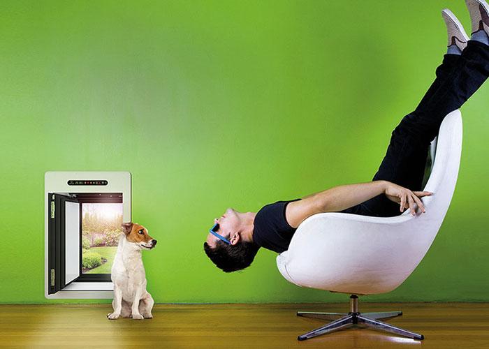 insektenschutz f r fenster und t ren insektenschutz f r. Black Bedroom Furniture Sets. Home Design Ideas